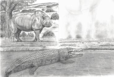 Rhino VS Carnivore2 Megacerops meets Astorgosuchus