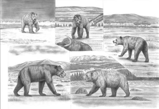 Battle Beyond Epochs: Most Colossal Bears Reupload