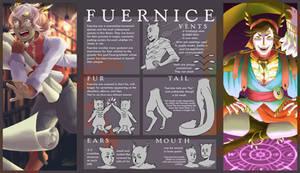 Fuernice info