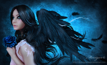 Romantic Angel by Morrigan-LE