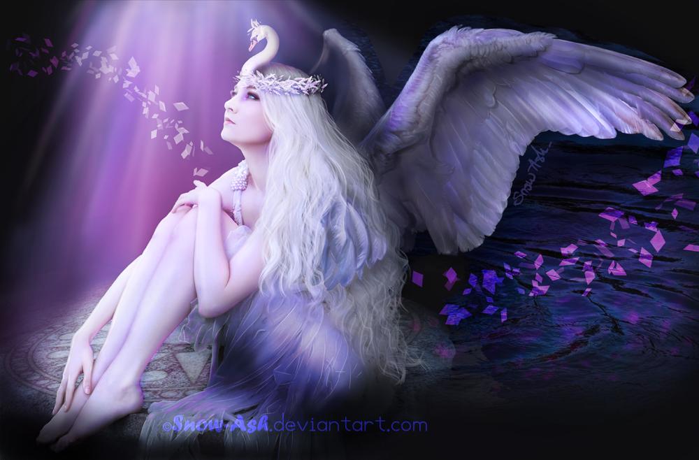 Swan by Morrigan-LE