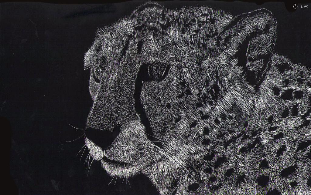 Cheetah by Blackberry-sama