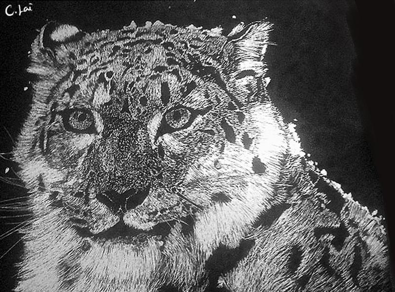 Snow Leopard by Blackberry-sama