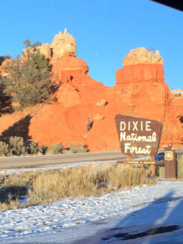 Dixie Apparently