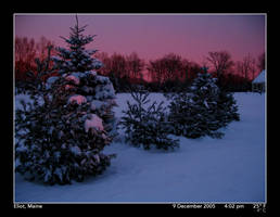 Blizzard Aftermath, 3 by PhotographyByIsh