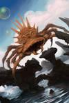 soapcomb spider