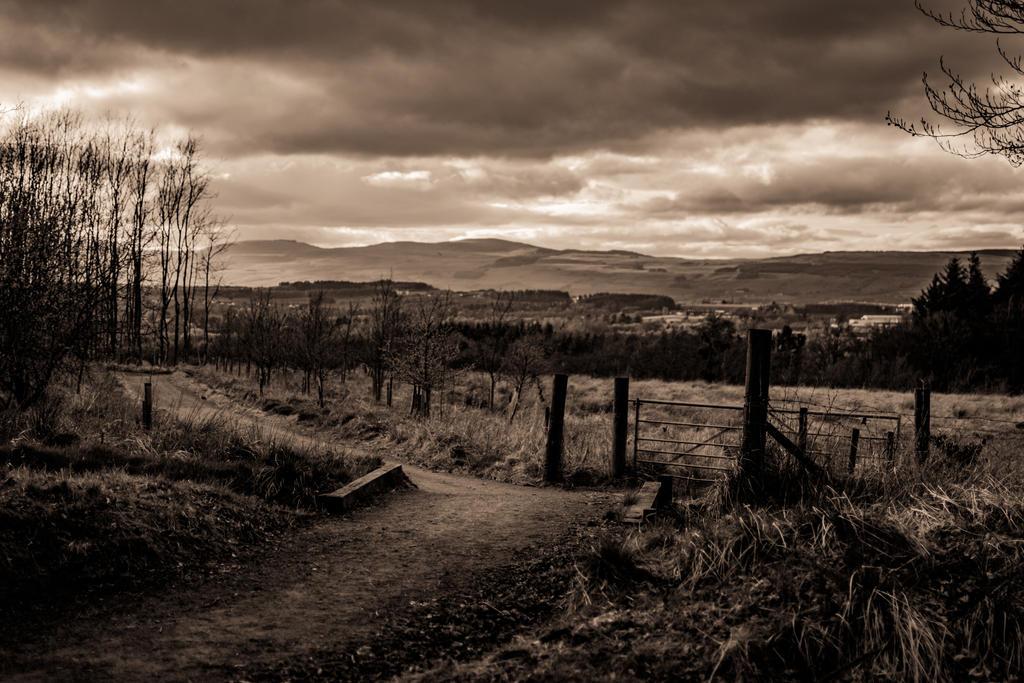 gateway to storm by paddyola