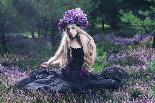 The moorland