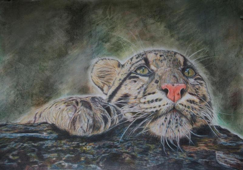 Leopard by TanjaLouiseArtist