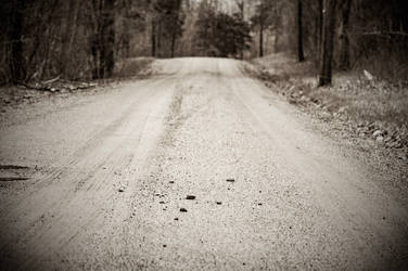 Dirt Road by duelmasterdestroyer