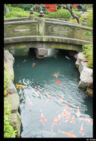 Bridge Over The River Koi by suqbus