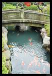 Bridge Over The River Koi