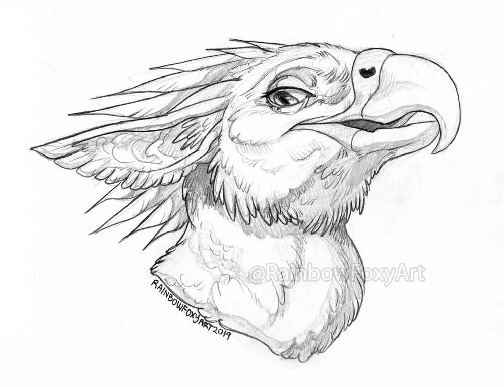WEB Crissdragonx Bust Sketch Comm by Rainbow-Foxy