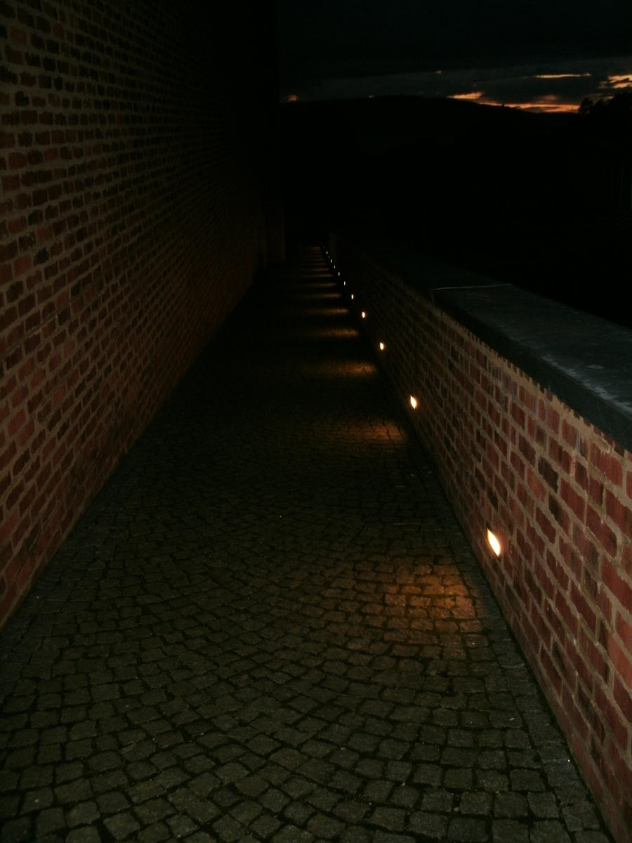 descent into darkness - photo #14