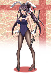 Bunny Girl Houki by Kuroda-Ariake