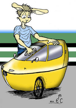 Bunny With a Cab Bike