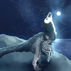 Nighttime Dakota by Insec-Sess