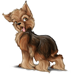 Yorkshire Terrier Caricature