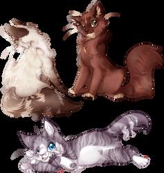 Bunch o' Cats