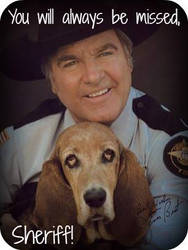 Rest In Peace, James Best