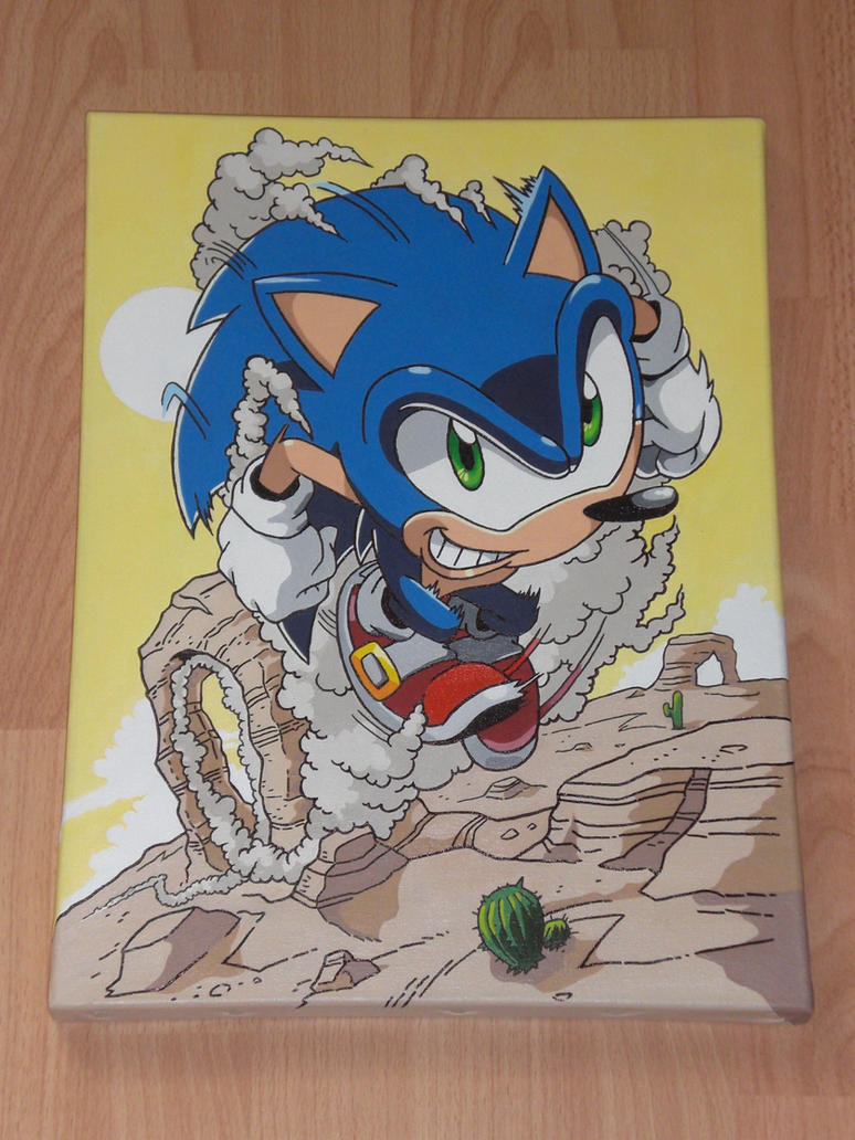 Sonic the Hedgehog Canvas ~finished~ by sonicxcari