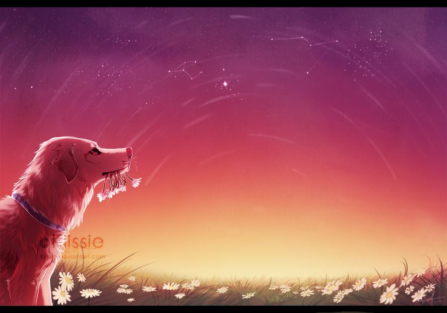 Memory by Klissie