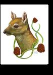 Deerface