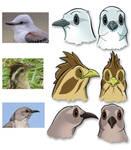 Birds of May - modelsheet03