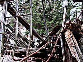 Abandoned Christmas 15