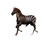 Fantasy Horse Png Stock 2