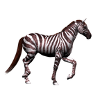 Fantasy Horse Png Stock 4