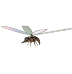 Steampunk Fairy Machine 'Dragonfly' Png