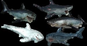 Mako shark mutations
