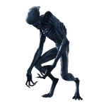 Xenomorph Hybrid Creature