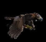 Hippogriff In Flight