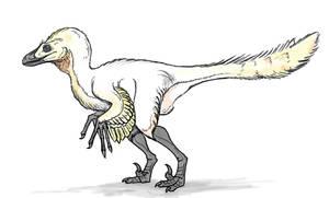 Velociraptor Sketch by Andrew-Graphics