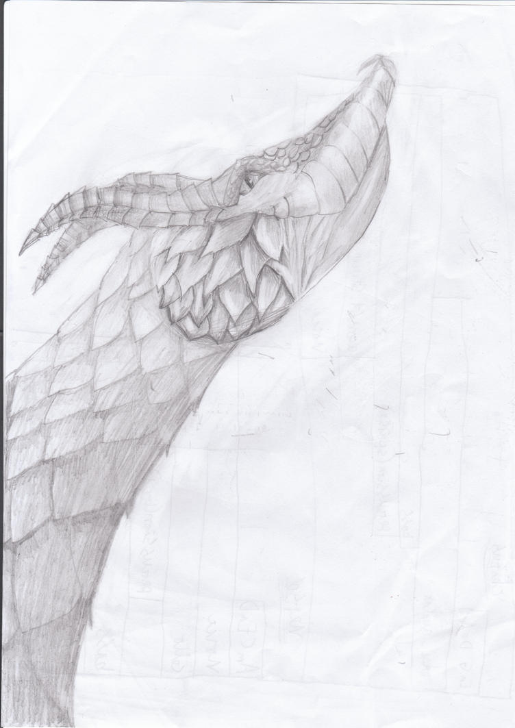 younger dragon by Caldrago