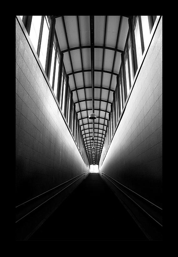 Correct Path by Wertonen