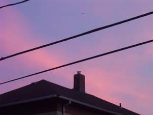 Purple Sunset 1