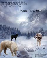 Wolf Spirit by struckrevenge