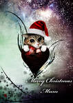 Merry Christmas for my Catmom