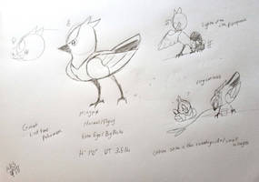 Fakemon Project- Magpip