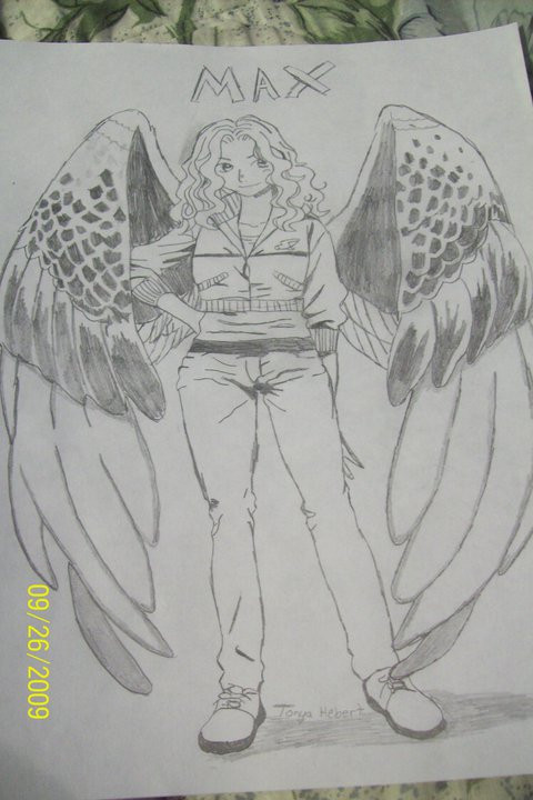 Maximum Ride by Tonnie95