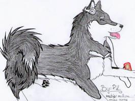Alaskan Malamute - pencil colourng by Klau--Lion-Heart