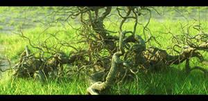 Roots in Vue