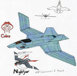 Cobra Nightjar ASF Experimental Phase B