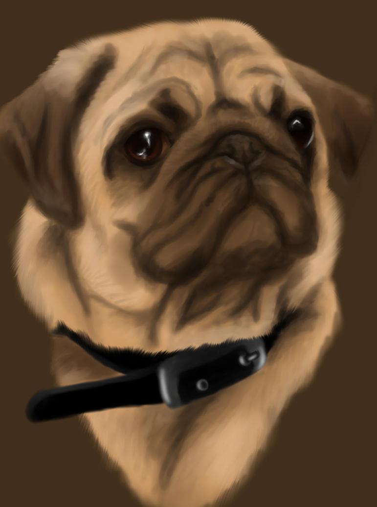 Pug by Condenados