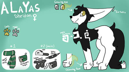 New Alayas Ref 2017 by Altairrr