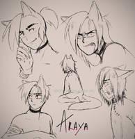 Araya working by MRCAT-ART