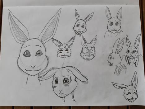 Beastars Sketches - Haru